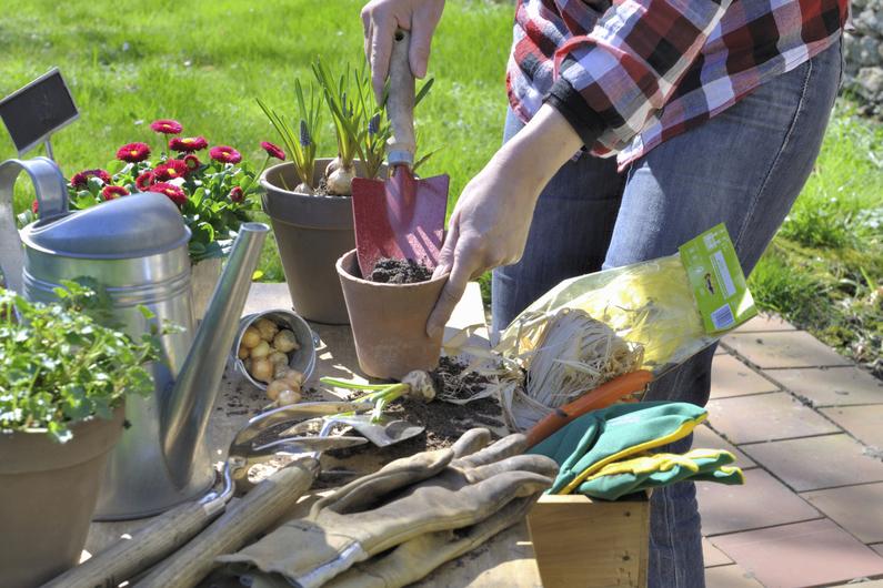 Un potager pour votre balcon les outils indispensables for Jardinier bruxelles