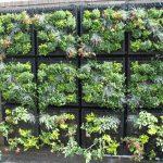 Habillez votre balcon avec un mur floral