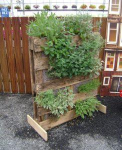 Utilisez une palette en bois comme support de potager vertical