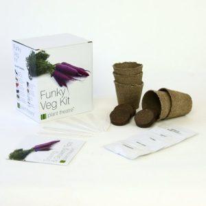 Kit de 5 légumes originaux