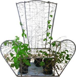 La chaise/plante