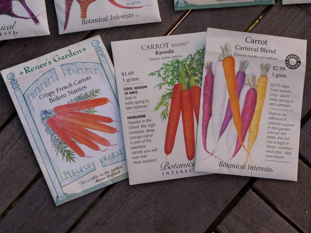 Graines de carottes
