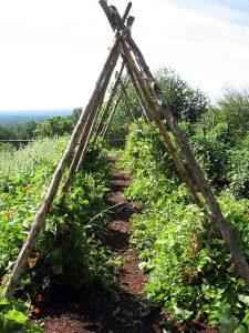 Une structure en A pour un jardin aéré et des supports robustes
